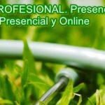 Curso en modalidad online o distancia de naturopatía. BECADO